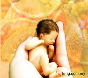 fengnews20110804002
