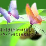 fengnews20130311fb