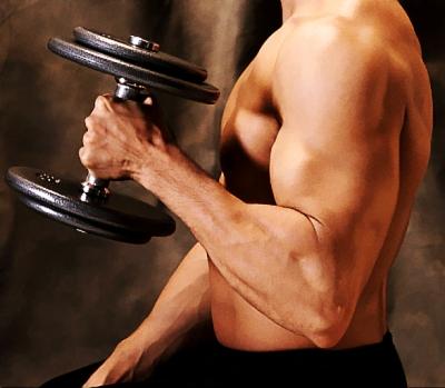男性健身feng