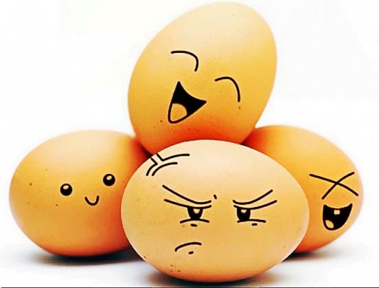 鸡蛋1_feng